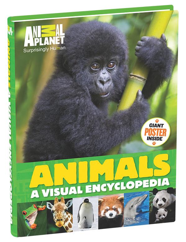 AP Encyclopeida_3D-Cover_big copy