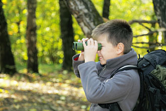 Get Started On Bird Watching Now