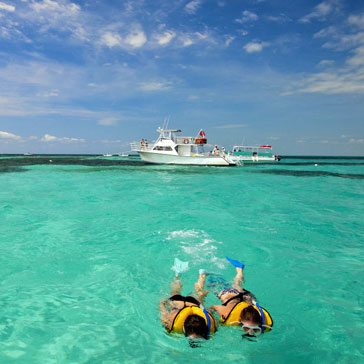 Snorkeling at an Undersea Park