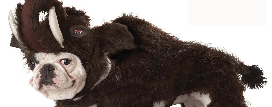 wooly_mammoth_dog_pet_costume_carousel