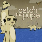Catch the Pups