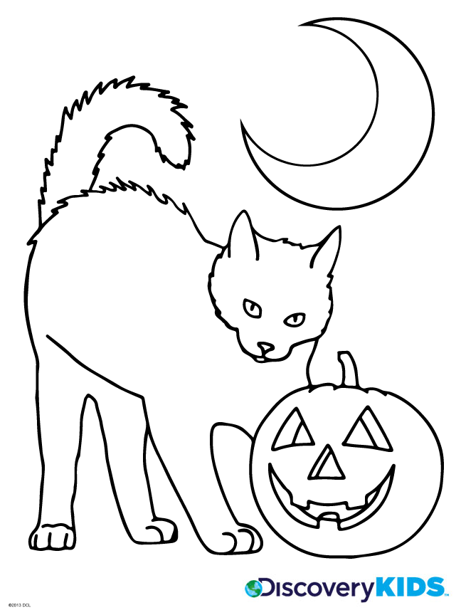 Halloween Cat Coloring Page Discovery Kids