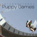 International Puppy Quiz