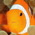 Ocean Creature Puzzles