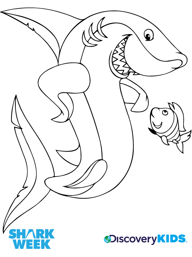 Shark Friend Coloring Page Discovery Kids