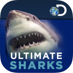 Ultimate Sharks
