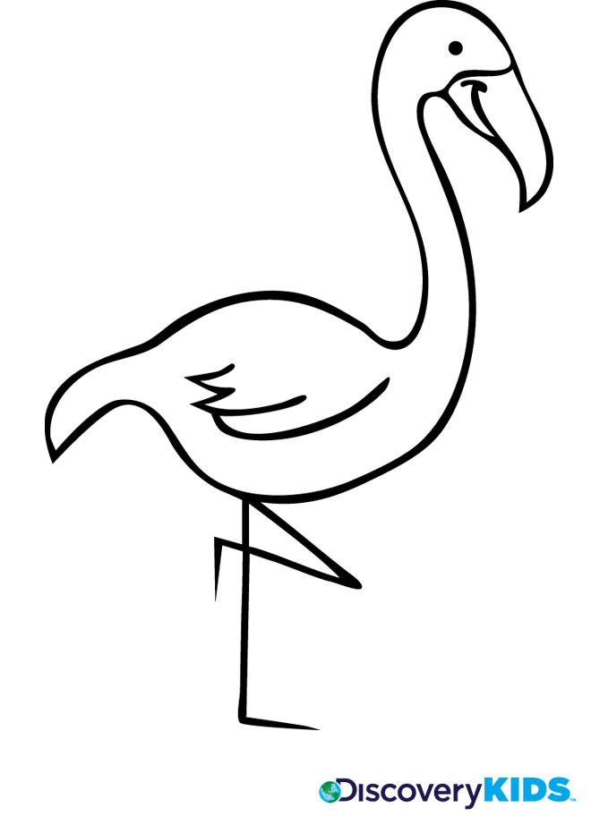 flamingo coloring pages printable free - photo#20