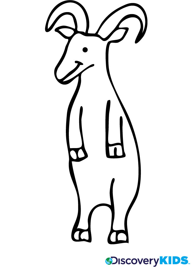 activity goat coloring page print