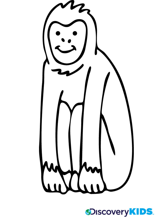 Activity: Monkey Coloring Page Print. Monkey