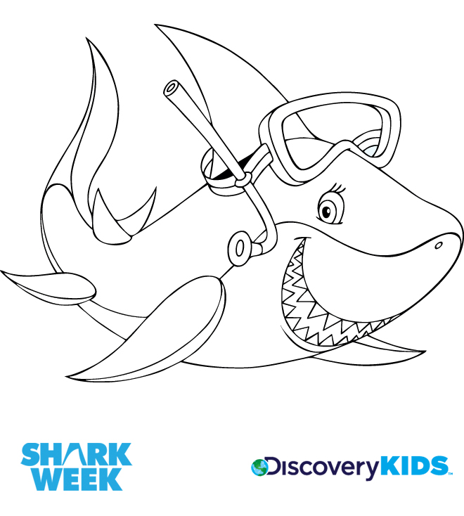 Sharks discovery kids for Sharks coloring pages